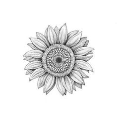 foot tattoos for women Sunflower Drawing, Sunflower Tattoo Shoulder, Sunflower Tattoo Small, Sunflower Tattoos, Sunflower Mandala Tattoo, Time Tattoos, Leg Tattoos, Black Tattoos, Body Art Tattoos