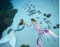 Mermaid, Aesthetic, Sea, Ocean, Beach, Water, Summer, Siren Mermaid Cove, Mermaid Tails, Mermaid Art, Real Mermaids, Mermaids And Mermen, Mermaid School, Sink Or Swim, Mermaid Swimming, Malibu Barbie