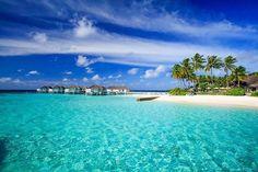 Comparateur de voyages http://www.hotels-live.com : #MGWV #F4F #RT Centara Grand Island Resort & Spa  - Malé Maldives Je vous plante le décor qui correspond en tous points au paradis tropical. Cela va vous paraître  cliché  mais je vous promets un lagon turquoise aux eaux cristallines et tièdes peuplé de milliers de poissons multicolores et une plage immaculée qui borde lîle avec sa corolle de sable. Les Maldives sont composées dun chapelet dîles. La vôtre sappelle Grand Island. Autre…