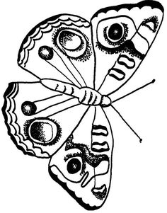 Wild Animals Kids Coloring Pages Free Colouring Pictures