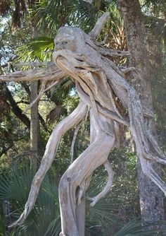 Amazing what one can do with drift wood! Artist is in Palm Coast, FL.