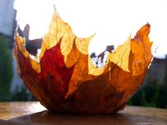 Schale aus Herbstblättern