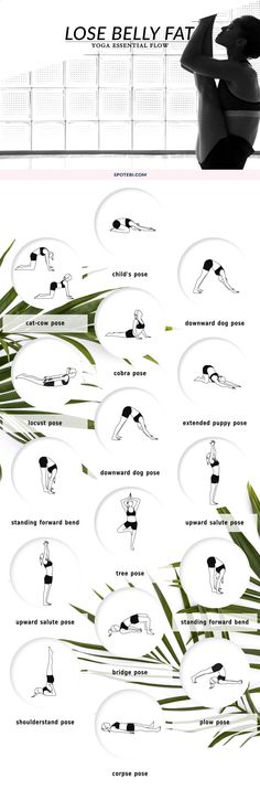 Lose Belly Fat and reduce cortisol levels with this 15-minute Yoga Flow for Beginners! www.spotebi.com/... via Spotebi - Workouts for Women