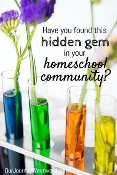 Have You Found This Hidden Homeschooling Gem in Your Community? Eighth Grade, Seventh Grade, Play Based Learning, Learning Through Play, Homeschool High School, Homeschooling, High School Plays, Science Lessons, Science Inquiry
