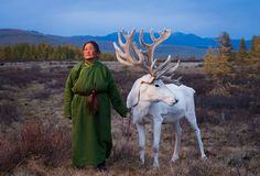 Mongolian reindeer herders – in pictures | World news | The Guardian
