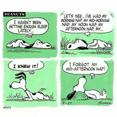 Oh Snoopy! The master of sleep x