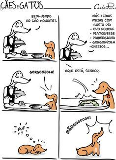 Phd Comics, Animals And Pets, Cute Animals, Dachshund Love, Pugs, Dog Cat, Funny Pictures, Funny Memes, Comic Books
