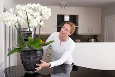 Bude, Orchids, Glass Vase, Woman, Indoor Plants, Home Decor, Table, Inside Plants, Decoration Home