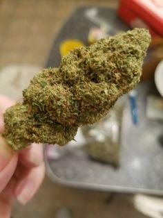 Марихуаны курение пониженное и давление в тест на крови марихуану
