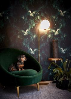 Beyond Nebulous Wallpaper from 17 Patterns is a mesmerising marble design in dark greens and navy blue. Living Room Designs, Living Room Decor, Bedroom Decor, Bedroom Designs, Bedroom Furniture, Interior Inspiration, Room Inspiration, Unique Wallpaper, Dark Green Wallpaper