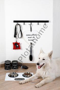 Verschillende projecten voor je huisdier