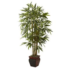 An ideal home or office decoration, this bamboo plant brings a touch of the East to any space. This perfect recreation of a beautiful bamboo plant is both bold, and whimsical at the same time. Comes with a decorative planter that enhances any decor.