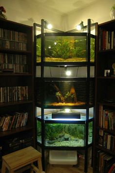 Aquarium stand in a study (YES). Place rack between 2 bookshelves.
