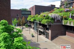 NEAVE BROWN, Architect |  de Medina 'Smalle Haven' housing complex, Eindhoven, Nederland, designed and built 1999 - 2003  | Neave Brown David Porter Architects |