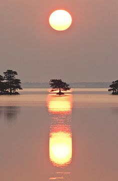 A Summer Sunrise - Lake Mattamuskeet, North Carolina