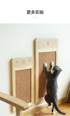 Quality Cat wood Scratch Board Cat Wall-mounted Scratcher Pad Kitten Scratching Sisal mat Furniture Sofa Claw Protector Pads with free worldwide shipping on AliExpress Mobile Space Cat, Scratched Wood, Cat Playground, Pet Furniture, Cat Scratch Furniture, Garden Furniture, Furniture Market, French Furniture, Refurbished Furniture