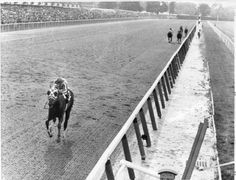In 1973, Secretariat won the Belmont Stakes and the Triple Crown. He beat his nearest competitor by 31 lengths, and set a record for speed that has yet to be broken. He's considered by many to be the greatest racehorse of all time.