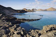 Galapagos Islands, I wanna go! Amazing!