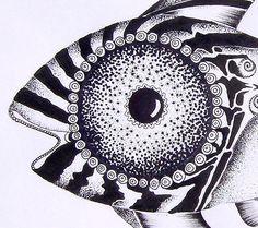 Aboriginal Fish  (2008)  Fish Art Original Sketch from J. Vincent Scarpace