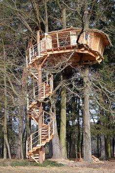 Česká společnost Tree Houses staví dřevěné domy v korunách stromů.
