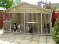 dog house for multiple big dogs | More information about Dog Kennel Building Design Plans on the site ...