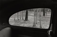 Oddities and Turmoil: Kenneth Graves's Pictures from the Bay Area, 1963-1974 - The New Yorker