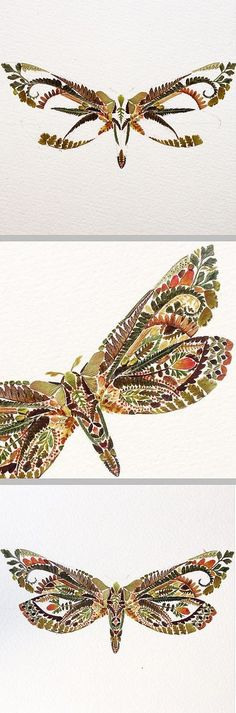 Ghost Moth ~ artist Helen Ahpornsiri. She creates beautiful pressed fern illustrations using a scalpel &/or needle with a small amount of tacky glue, arranging tiny bits of stems & leaves on paper to create butterflies, dragonflies, & birds scarcely larger than a coin. Many more lovely creations on her website. #horticultural_art