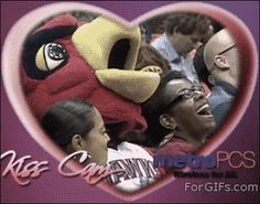Probably the best kiss cam ever…(GIF)