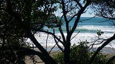 Summer Gore Bay New Zealand