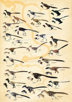Dromaeosauridae (version 2) by Kana-hebi on DeviantArt