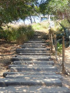to the beach.  Martinhal, Portugal