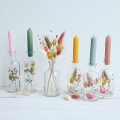 Bar Deco, Ideias Diy, Deco Floral, Dried Flowers, Diy Gifts, Flower Arrangements, Christmas Diy, Diy Home Decor, Diy And Crafts