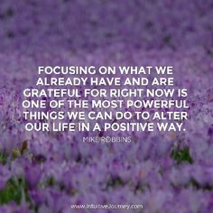 Focusing on what we already have and are grateful for right now is one of the most powerful things we can do to alter our life in a positive way.  #quotestoliveby