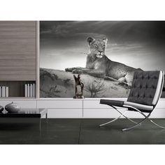 Preciosos fotomurales con animeles dedicados a los amantes de la naturaleza #fotomurales #fotomural #wallpapers #home #decor #decoraciones #animales #animals