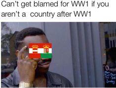#wwi #ww1 #war #austria #hungary #austrohungarian #austriahungary #country #nation #dissolve #meme #memes #historymemes #history #dank…