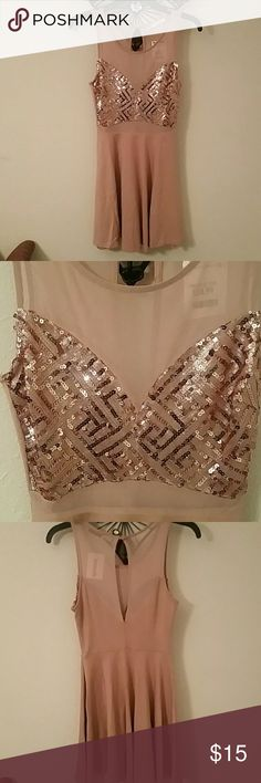 Absolutely adorable and brand new skater dress Size small , NWT, Lush, baby rose pink, sequined, with lace netting in back, front of chest area with sparkly sequins and in belly area with a zipper up the left side and button at top in the back. Absolutely stunning little mini dress!! Lush Dresses Mini