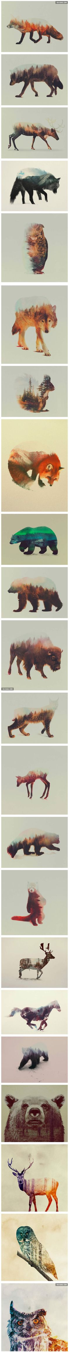 Double exposure pictures would look awesome as a tattoo! Would get the wolf one