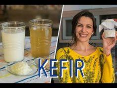 10 mitos sobre KEFIR (tipos, cuidados, congelamento e mais) - YouTube