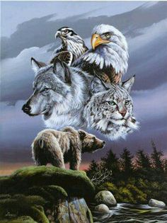 Native American Names and Meanings Pg 3 Native American Music, Native American Paintings, Native American Pictures, Native American Quotes, American Indian Art, Native American Indians, Animal Spirit Guides, Wolf Pictures, Wolf Spirit