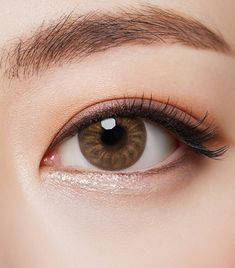 72436f5072 Visual Insight of Beauty O-LENS - Best Korean Colored Contact Lens -  Blossom Brown