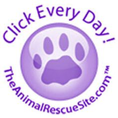 The Animal Rescue Site - Save a stray, click every day... Help feed animals by just one click each day