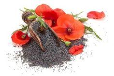 Health Benefits of Poppy