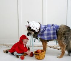 The sweetest Little Red Riding Hood & Big Bad Wolf costume! Little Red Riding Hood Halloween Costume, Best Dog Halloween Costumes, Diy Dog Costumes, Grease Costumes, Woman Costumes, Pirate Costumes, Couple Costumes, Group Costumes, Couple Halloween