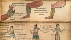 "Shedding light on Tibet's healing customs is the goal of ""Bodies in Balance,"" a new exhibition at the Rubin Museum of Art. Massage Marketing, Healing Hands, Massage Techniques, Medical History, Chinese Medicine, Holistic Healing, Illuminated Manuscript, Massage Therapy, Vintage World Maps"