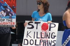 Los Angelenos Stand Up For Japan's Dolphins