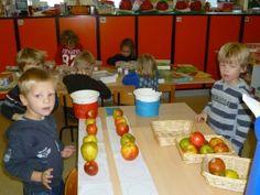 Appels sorteren, kleine muis zoekt een huis: denkontwikkeling