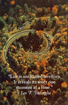 """""""Life is uncharted territory. It reveals its story one moment at a time.""""    - Leo F. Buscaglia"""