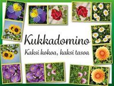 muistipeli Archives - RyhmäRenki Science And Nature, Kindergarten, Gallery Wall, Teaching, Frame, Flowers, Plants, Natural, Decor