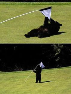 I guess he played a rough game today too... | Rock Bottom Golf #RockBottomGolf