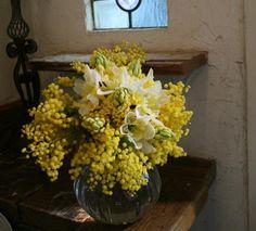 ミモザのブーケ : ムギハナな毎日 Floral Arrangements, Flower Arrangement, Botanical Illustration, Ladies Day, Wedding Bouquets, Our Wedding, Leaves, Yellow, Green